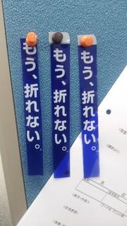 DSC_0261.JPG