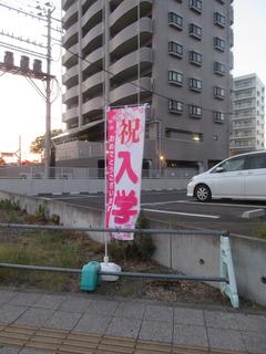 IMG_8453.JPG